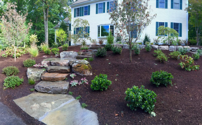 Natural Fieldstone Steps